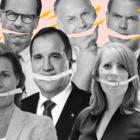 QUIZ: Vilket regeringsalternativ är du?