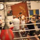 """""""Det här är boxning på riktigt!"""""""