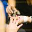 Veckans Playtips: Nagelfixarna